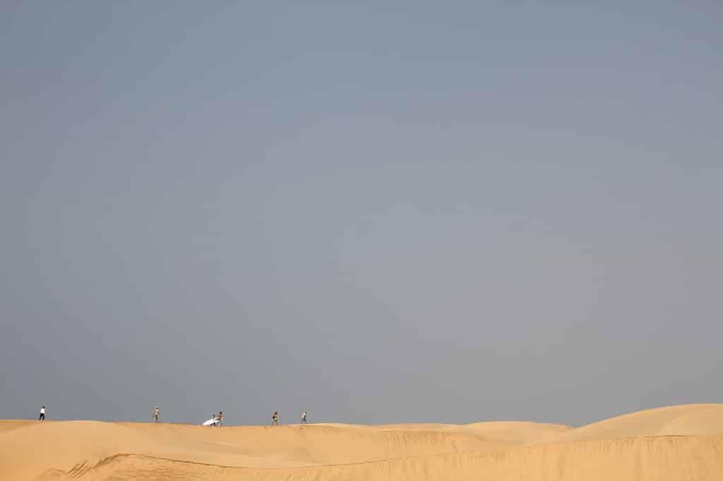 surfing desert style